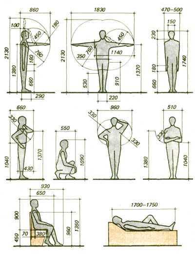 Стандартные и оптимальные размеры мебели